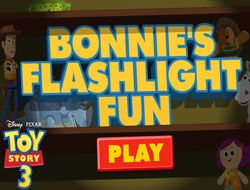 Bonnies Flashlight Run