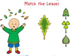 Caillou Match the Leaves