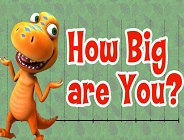 How Big Are You?