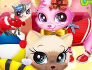 Kitty Pet Care Salon