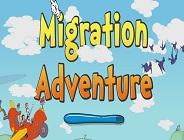 Migration Adventure