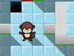 Monkey Rally