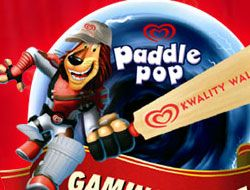 Paddle Pop Quick Cricket