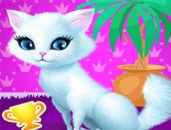 Princess Kitty Care