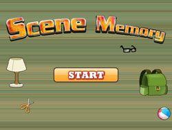 Scene Memory