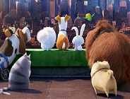 The Secret Life of Pets Find Objects