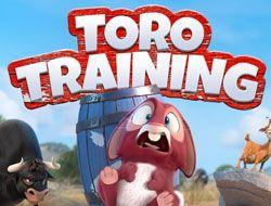 Toro Training