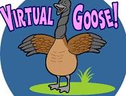 Virtual Goose